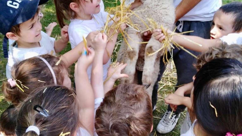 Kinder 3 y 4 de visita en la Granja La Aurora